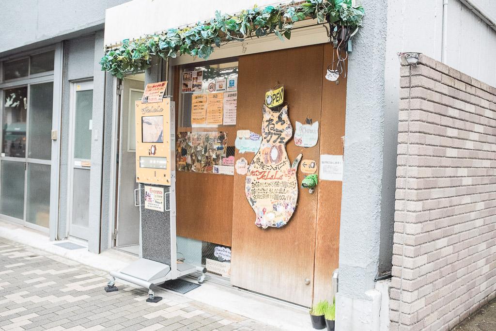 猫カフェ・ジャララの入り口