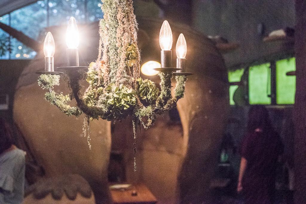 猫カフェ・てまりのおうちの照明