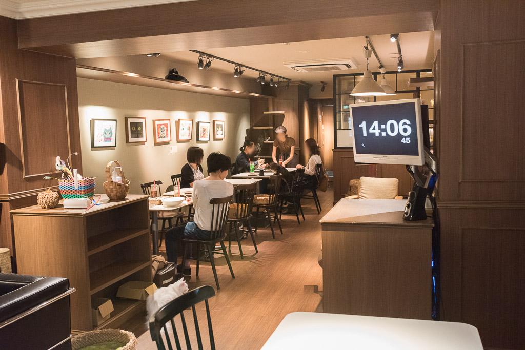 猫カフェ・きゃらふの店内