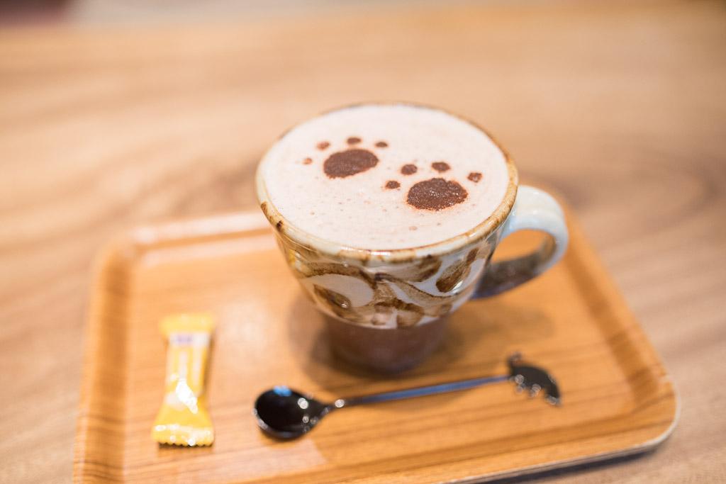 猫カフェ・キャテリアムのココア