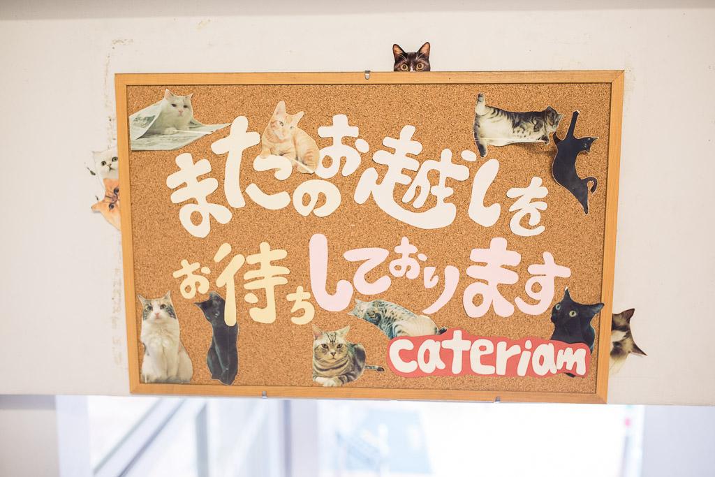 猫カフェ・キャテリアムのお見送り看板