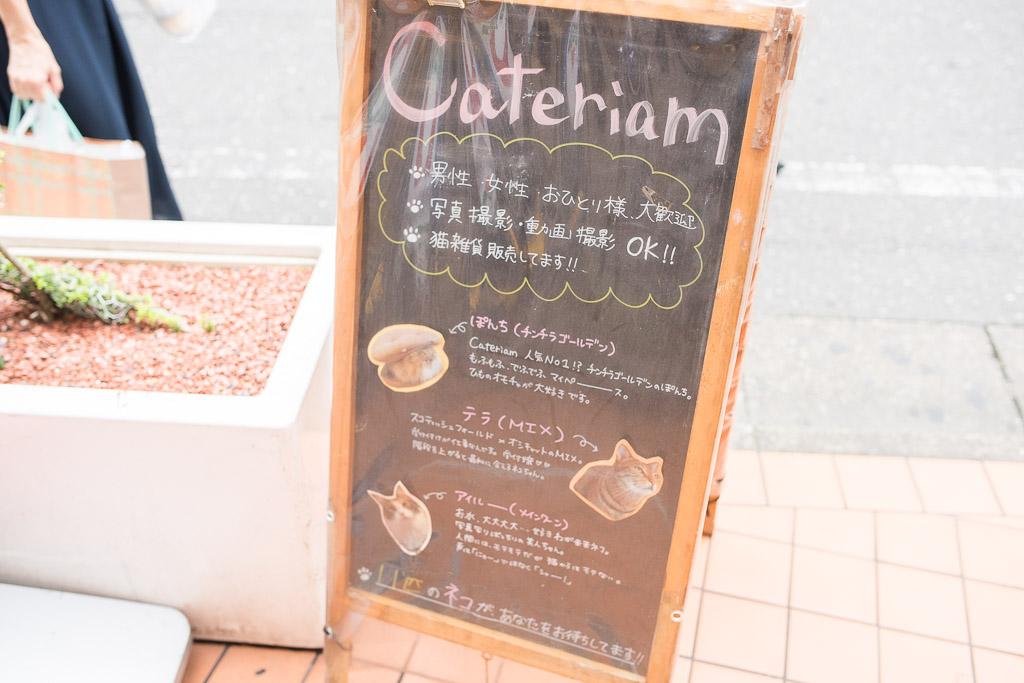 猫カフェ・キャテリアムの看板