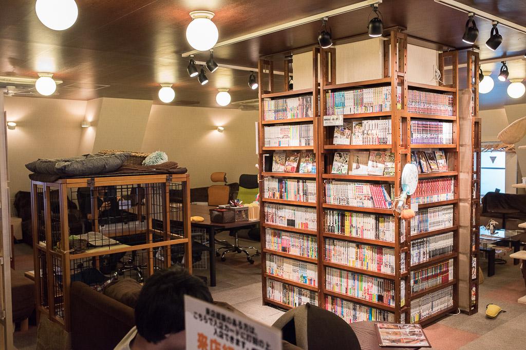猫カフェ・猫の居る休憩所299の店内