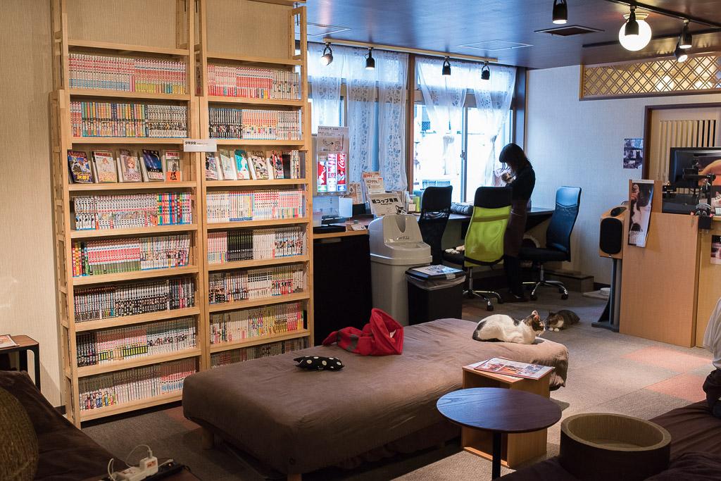 猫カフェ・猫の居る休憩所299の本棚