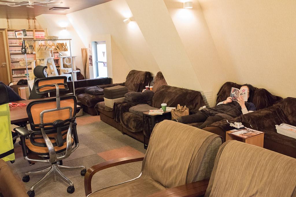 猫カフェ・猫の居る休憩所299でリラックスしてるお客さんたち