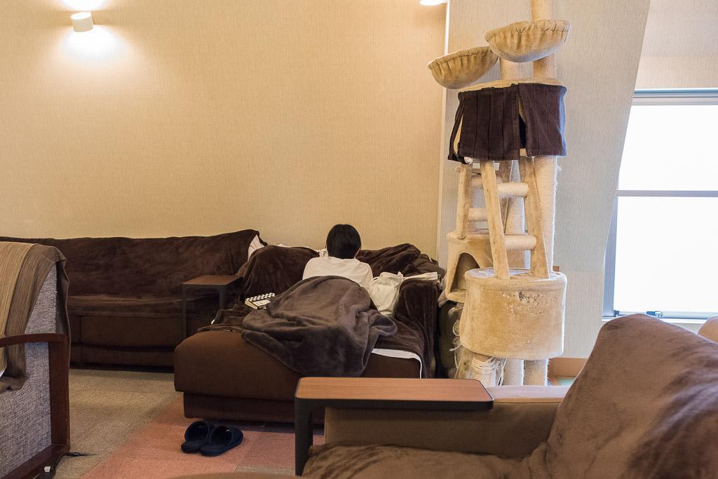猫カフェ・猫の居る休憩所299のベッド席