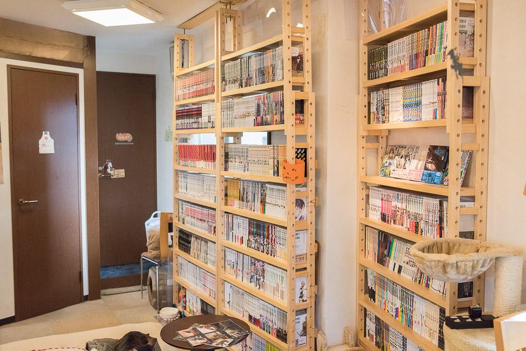 猫カフェ・ねこのみせの本棚