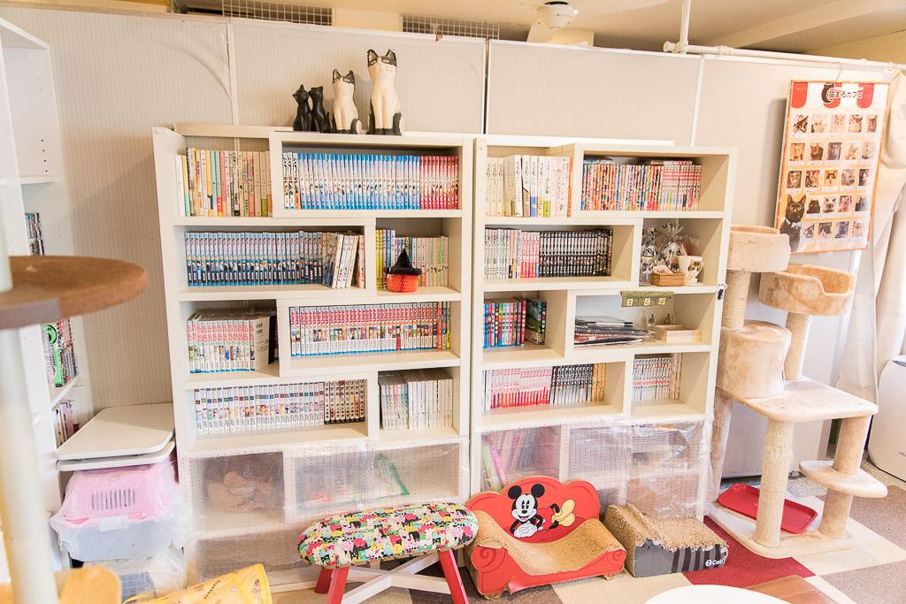 猫まるカフェの本棚