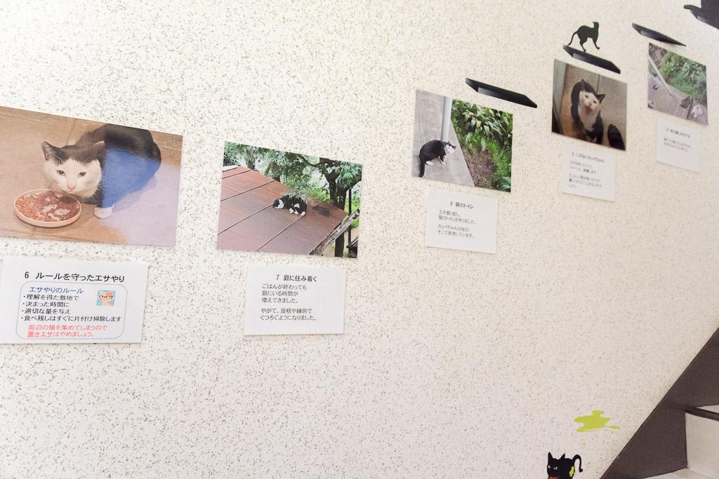 猫カフェ・ネコリパブリックの階段にある写真
