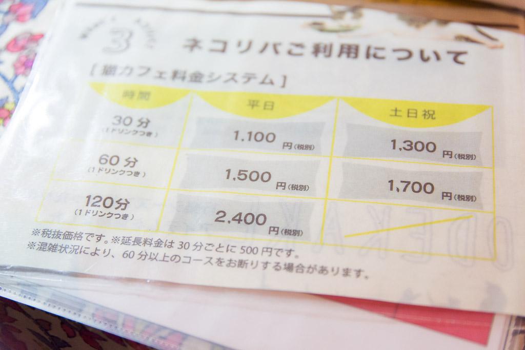 猫カフェ・ネコリパブリックの料金説明