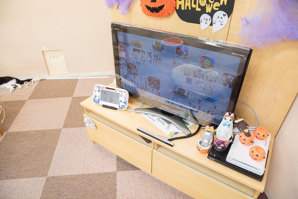 猫カフェねころびにあるテレビゲーム