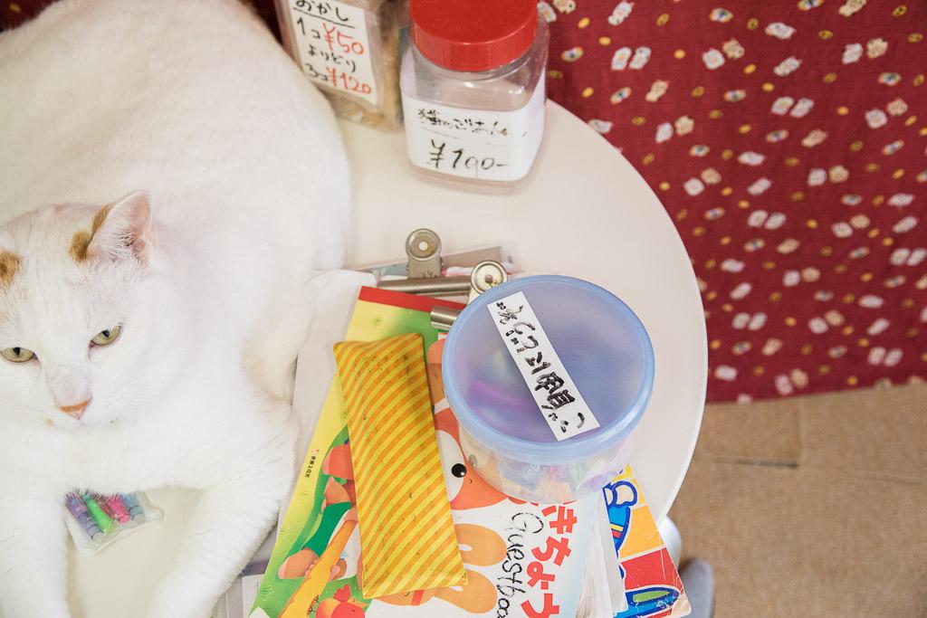 猫カフェ・ねこ園にある無料の飴