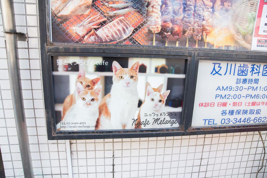 猫カフェ・ニャフェ・メランジェの看板