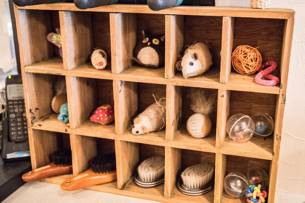 猫カフェ・ニャフェ・メランジェのおもちゃとブラシ