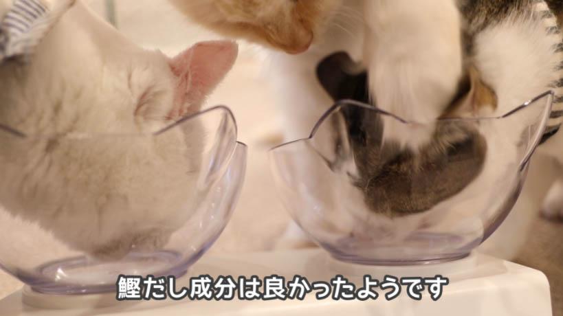 和の究み鰹だし香るみそ汁風味の鰹だし成分は猫に好評だった