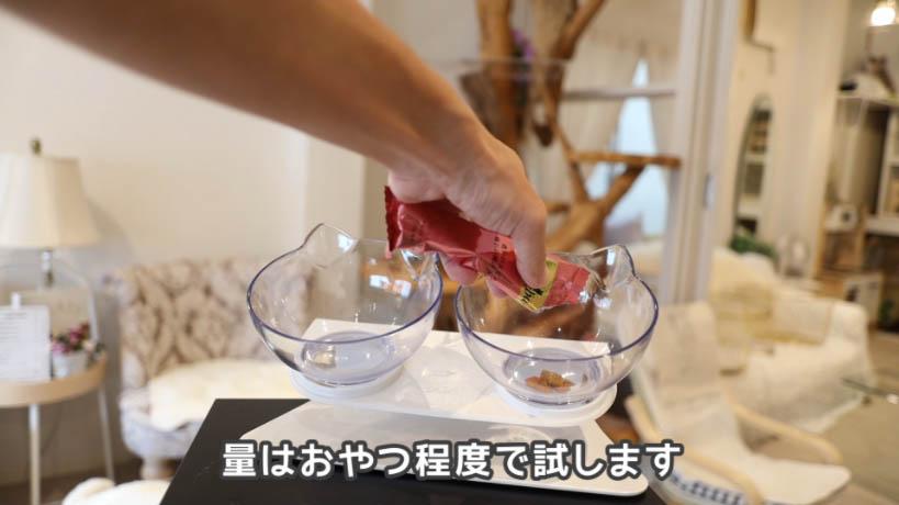 シーバDUO香りのまぐろと味わい鶏ささみ味をお皿に入れる