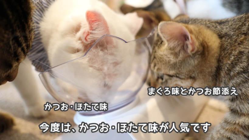 銀のスプーン三ツ星グルメお魚レシピのかつお・ほたて味とまぐろ・かつお節味の食べ比べ