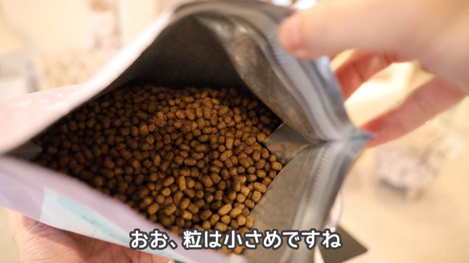 モグニャン・キャットフードの粒のアップ