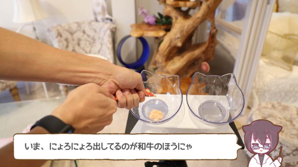 チャオちゅーる和牛味をお皿に出す