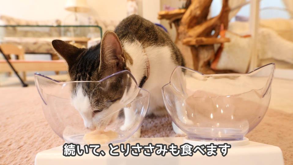 チャオちゅーるのとりささみを食べる猫