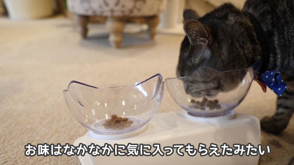 ロイヤルカナン プロテインエクシジェントを気に入る猫