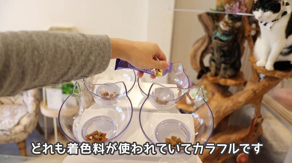 シーバDUO贅沢お魚味グルメセレクションは着色料が使われている