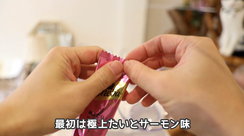 シーバDUO贅沢お魚味グルメセレクションの極上たいとサーモン味