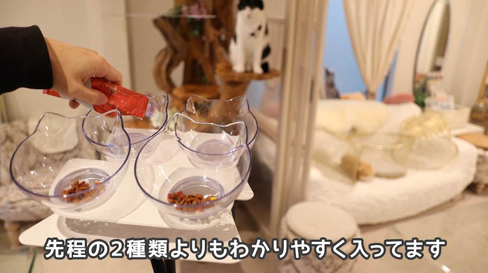 モンプチ4つのうれしい贅沢バラエティのかにかま入りをお皿に出しているところ